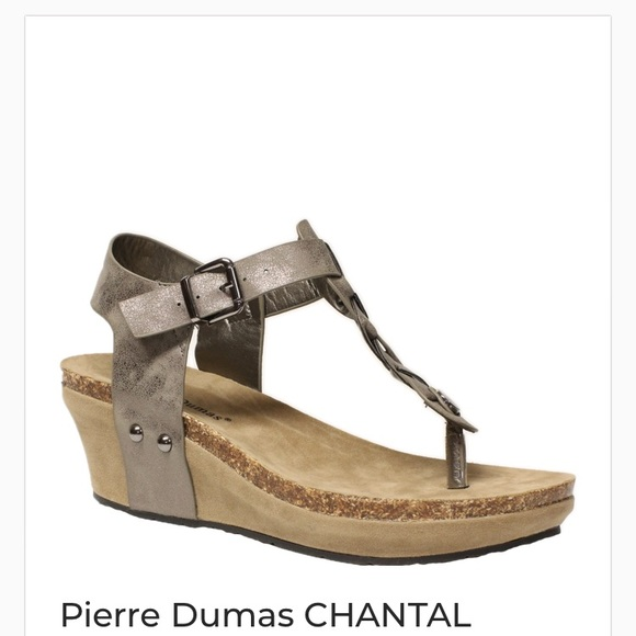 e298dd6584 Pierre Dumas Shoes | New Pierre Thomas Wedges Bronze Thong Sz 9 ...